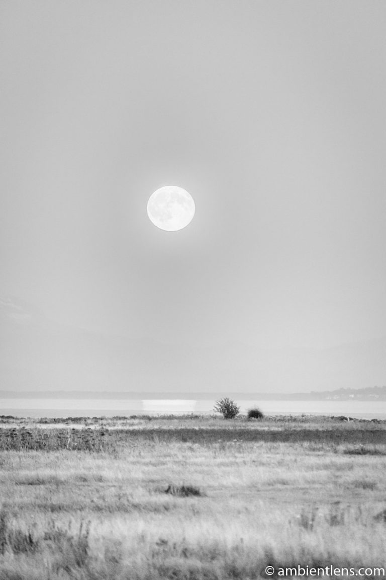 Moonrise Reflection 1 (BW)