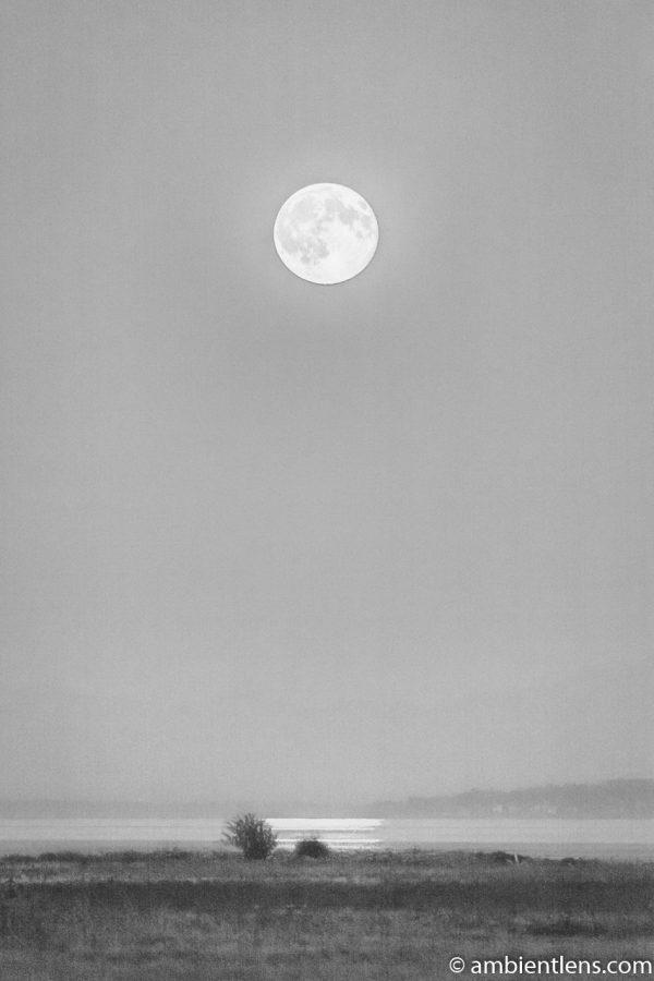 Moonrise Reflection 2 (BW)