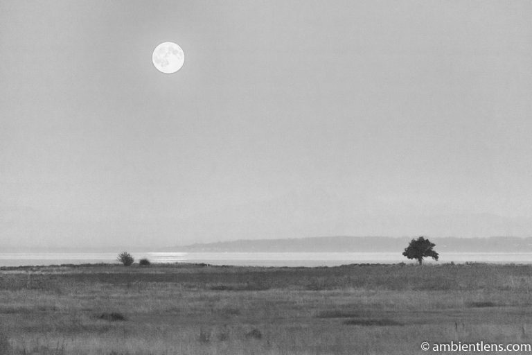 Moonrise Reflection 3 (BW)