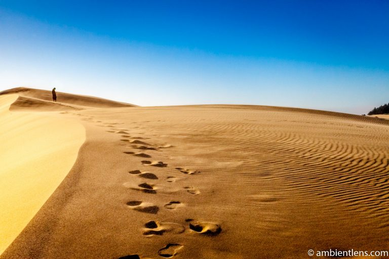 Crossing the Sand Dunes 1