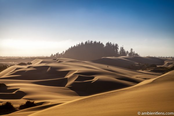 Crossing the Sand Dunes 2