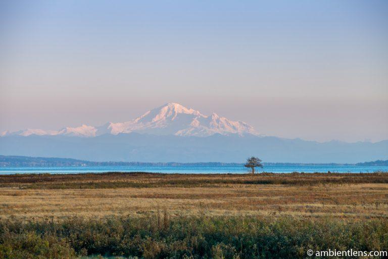 Mount Baker, Washington, USA 4