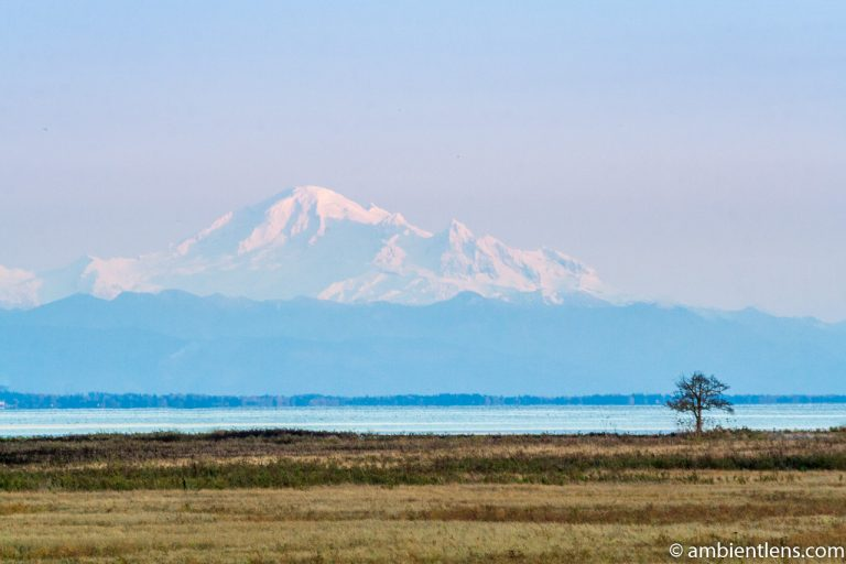 Mount Baker, Washington, USA 5