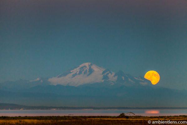 Mount Baker Moonrise 4