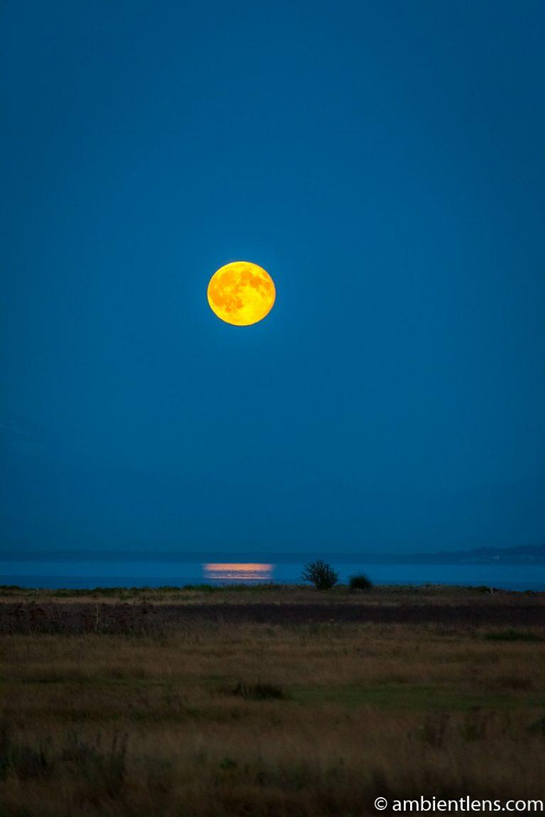 Moonrise Reflection 1