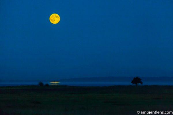 Moonrise Reflection 3