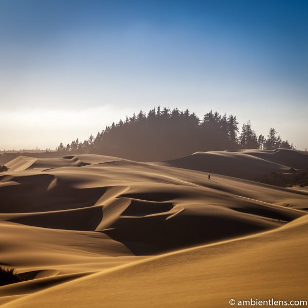 Crossing the Sand Dunes 2 (SQ)