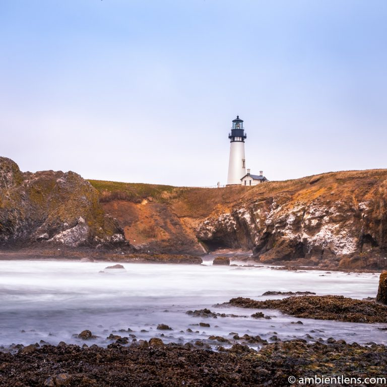 Yaquina Head Lighthouse 1 (SQ)
