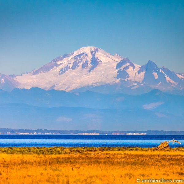 Mount Baker, Washington, USA (SQ)